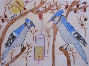 Blue Jays in Sumac