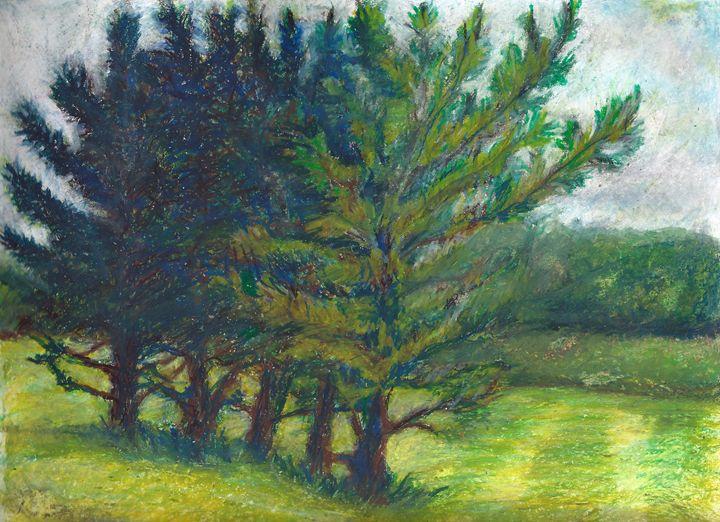 Walnut Woods Park - Barbara J Meacham