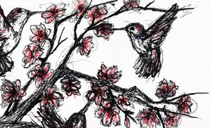 Hummingbirds and Blossoms