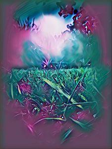 Midnight Moonlit Air