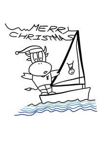 Yacht Race on Christmas