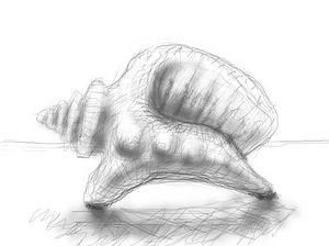 seashell dinosaur