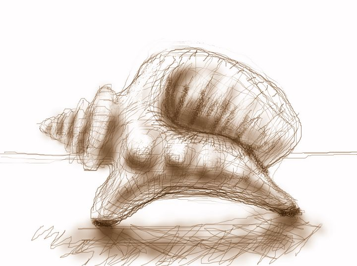 seashell dinosaur - woz