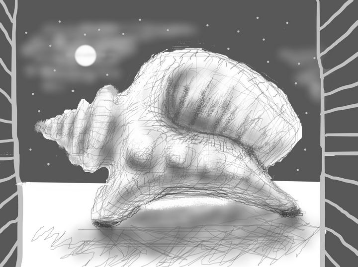 seashell dinosaur in the window - woz