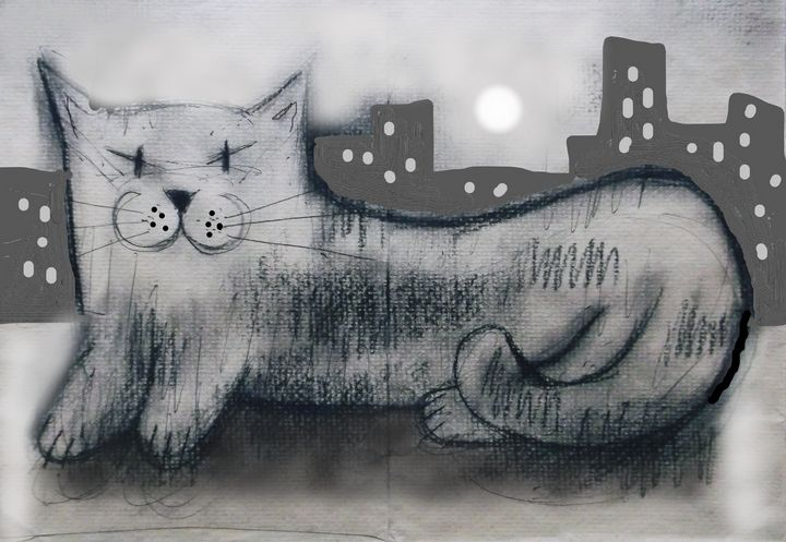 grey cat - woz