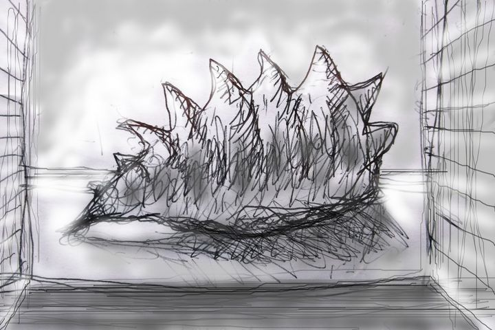 sea shell - woz