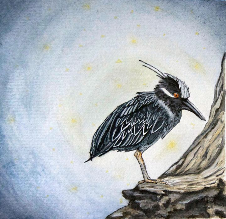 The Night Heron - ByChelsea
