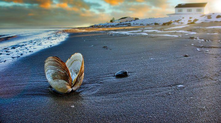 Clam Beach Sunset - Sky North Photography