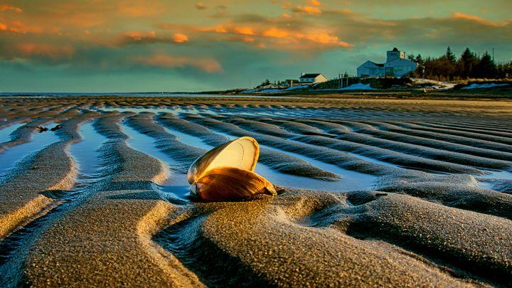 Rippled Beach - Sky North Photography