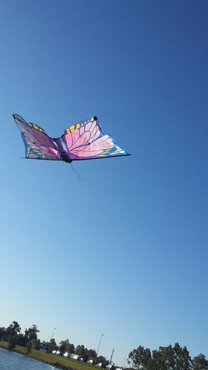 Butterfly kite - Arts and wonders