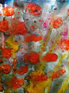 Poppies in the sky - Le Aly di Lia di Donatella Marraoni