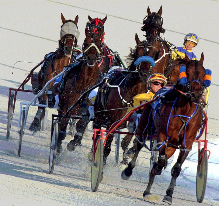 Harness Racing #12 - Larry Singer Fine Art Photography