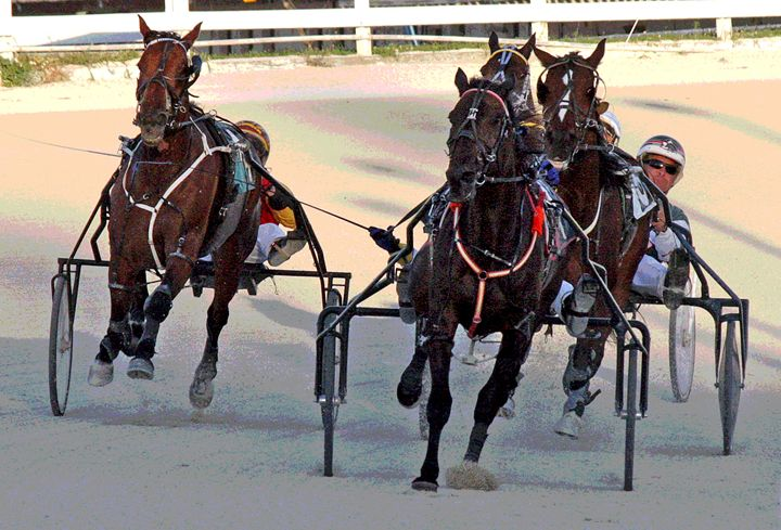 Harness racing #9 - Larry Singer Fine Art Photography