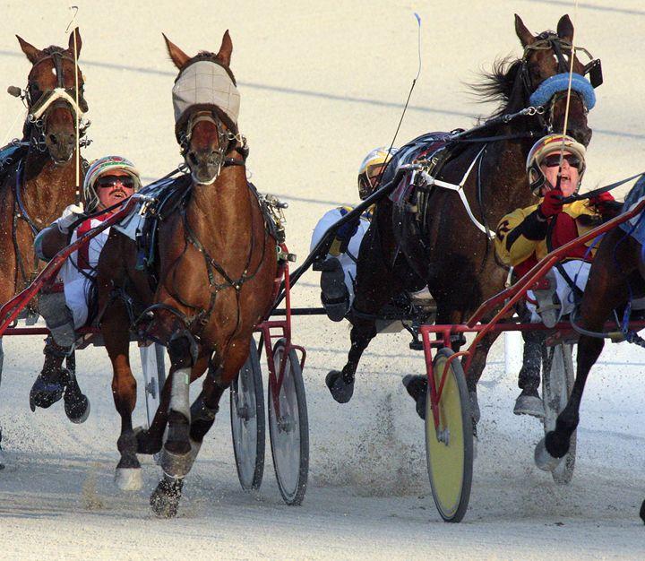 Harness Racing #8 - Larry Singer Fine Art Photography