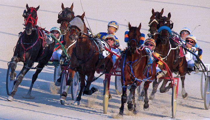 Harness Racing #11 - Larry Singer Fine Art Photography