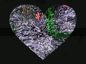 Heart #10