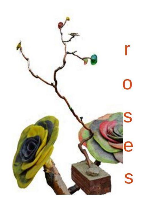 roses - The Farming Artist