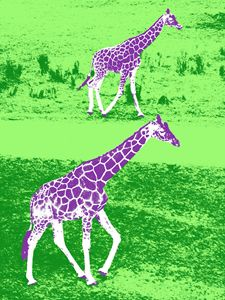 Giraffes in Purple and Green