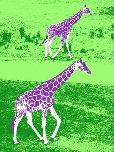 Giraffes in Purple and Green - Vanessa Ray
