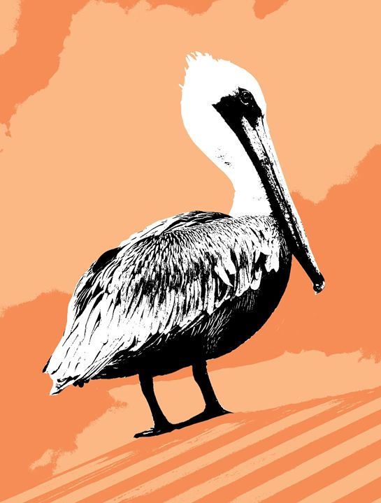 Pelican in Orange - Vanessa Ray