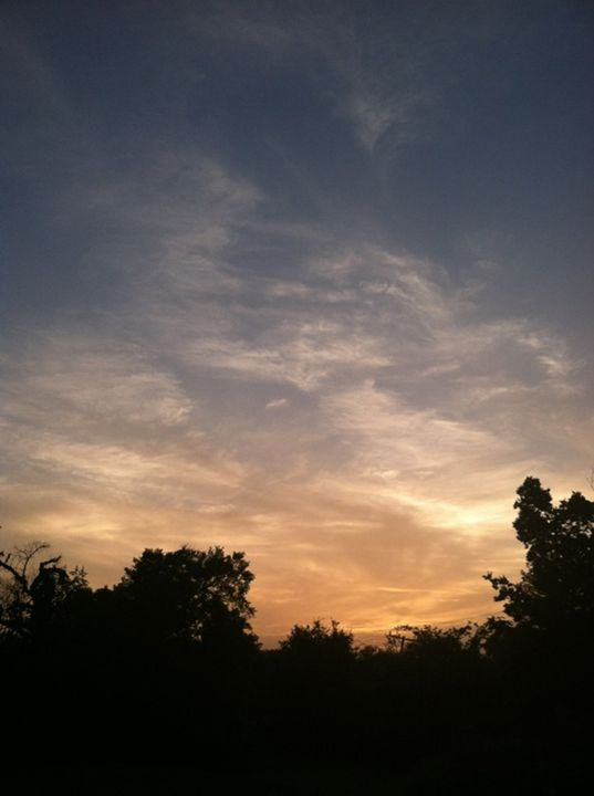 Sunset - Joyce Boley