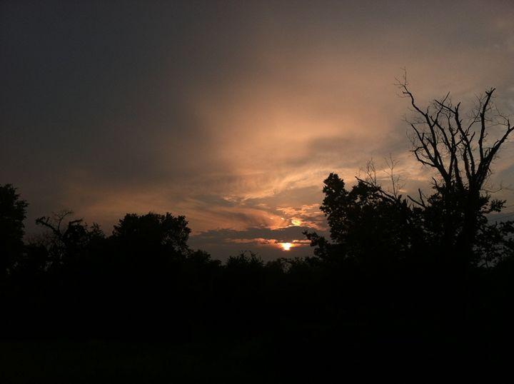 Sunset 2 - Joyce Boley