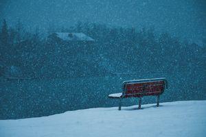 Snowy Alaskan Day