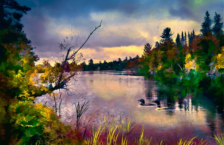Loon Bay - Wib Dawson Paintings