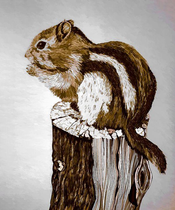 Eastern Chipmunk - Wib Dawson Paintings