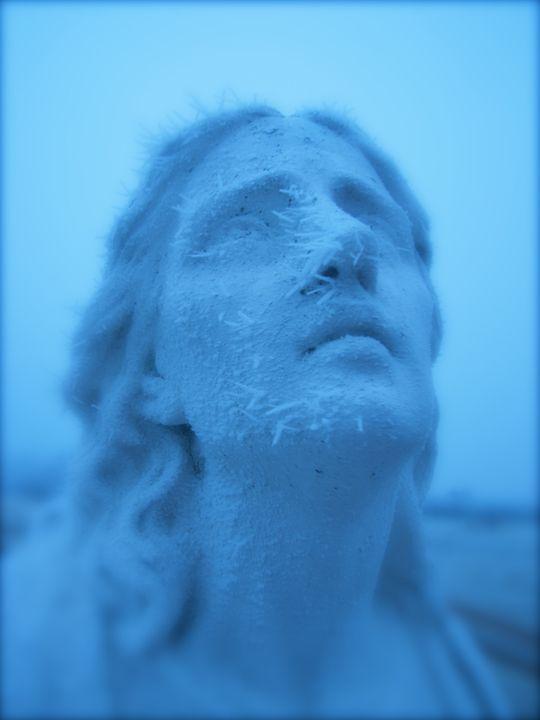 Frozen - The Blushing Artist