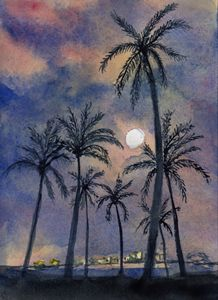 Moonlight Over Key West