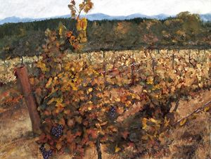 Vineyard Lucchesi