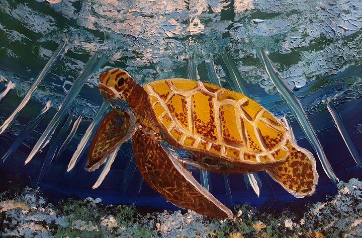 Turtle - Samantha Wilson