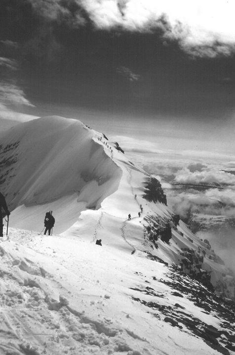 Along the Ridge - David K. McMillin