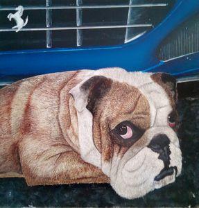 Boxerdog - KSULL2019