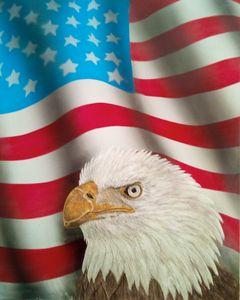 American eagle - KSULL2019
