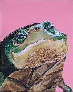 Happy turtle 🐢