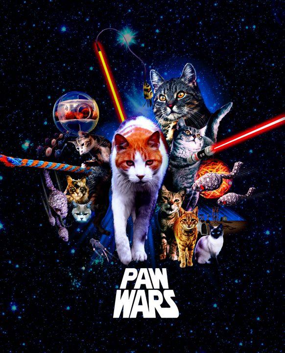 PAW WARS - The Graphic Guru