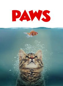 Beware of PAWS
