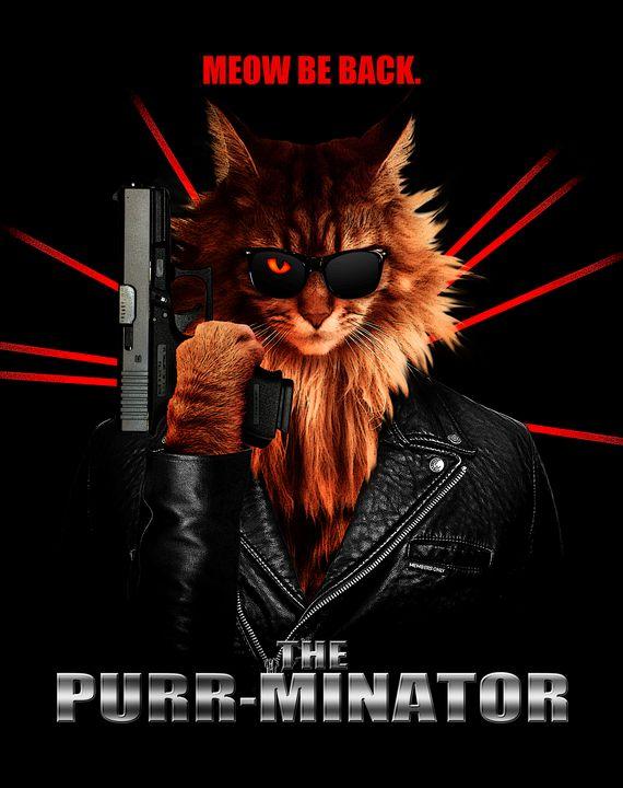 The Purr-minator: Meow Be Back - The Graphic Guru