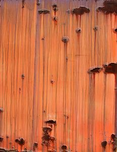 delicious orange rust 2