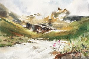 Alpine lawn