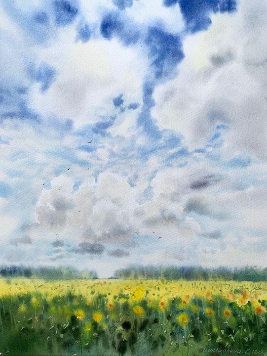Sunflower field - Eugenia Gorbacheva