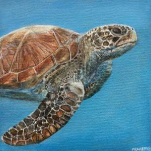 Acrylic Sea Turtle