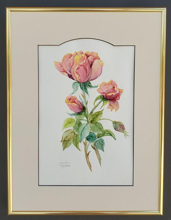 Roses - Pauline Raedeke