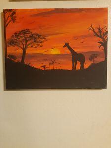 Sunny Safari