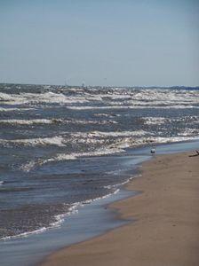 Beach & Waves 1