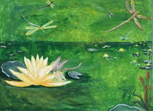Waterlilies and dragonflies