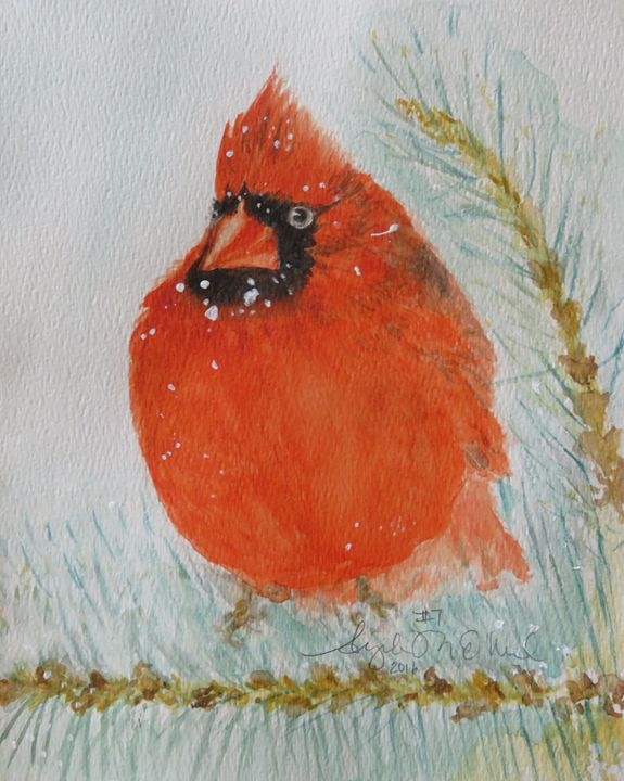 Cardinal in the Snowy Pines - Angela M. O'Neal