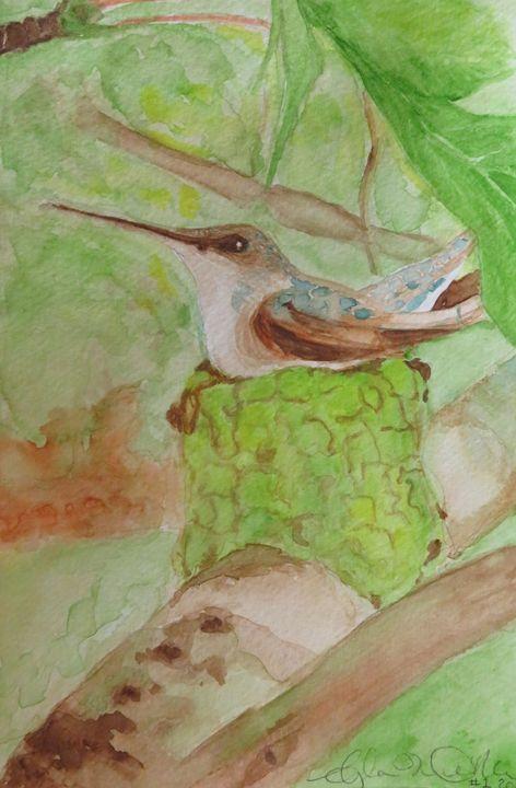 Hummingbird in Nest - Angela M. O'Neal